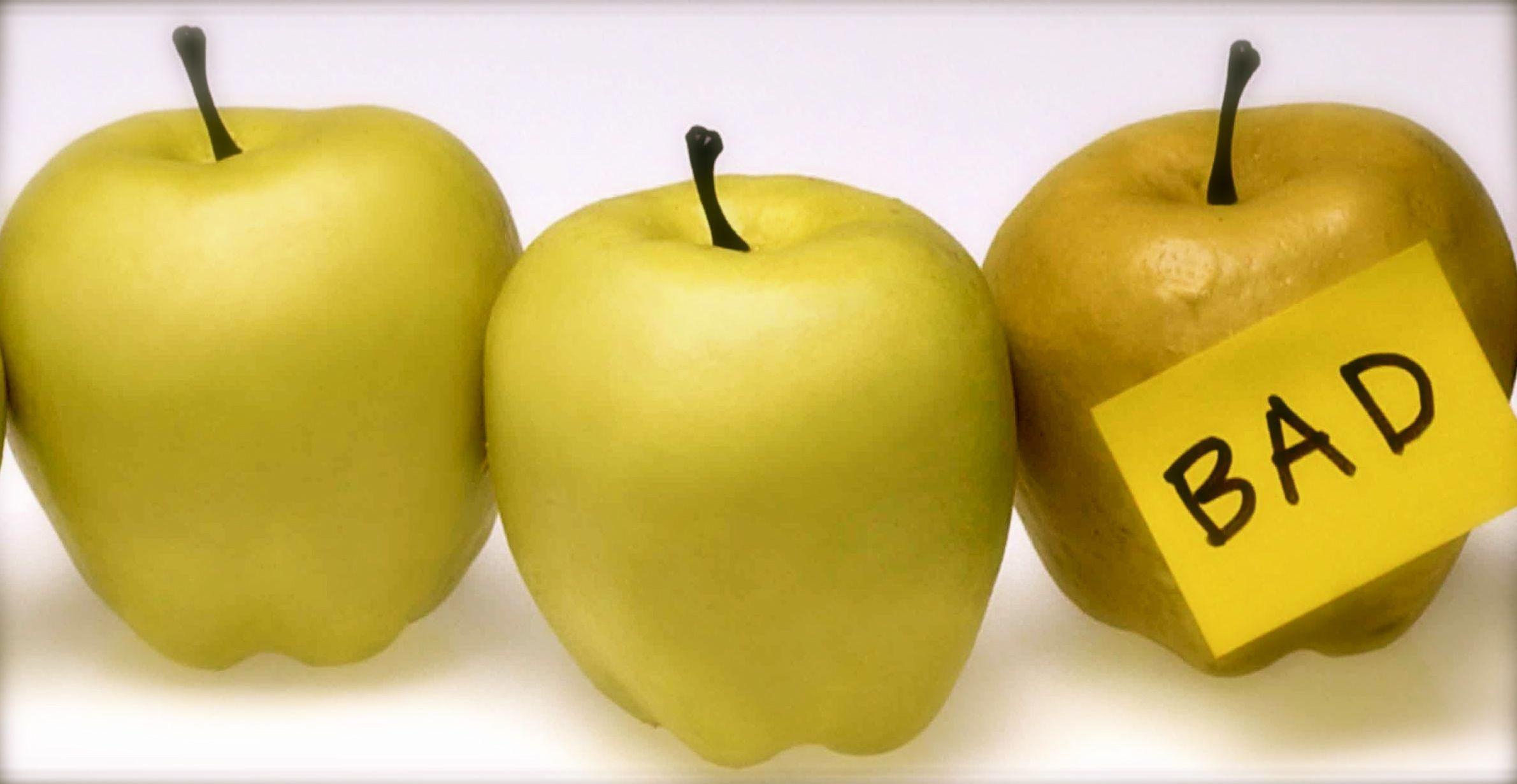 Season's Gifting Starts With Award-Winning Caramel Apples, Gourmet Gifts & Belgian Chocolates!