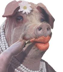 "Miss Piggies: ""We'll never shop here again!"" Go OINK! yourselves, Biatches! This is from the Editor"