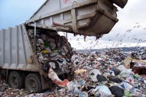 Coeymans Town Board Visions of Dumps